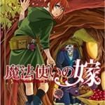 魔法使いの嫁 5巻の発売日と内容ネタバレ ジョエルとリャナン・シー
